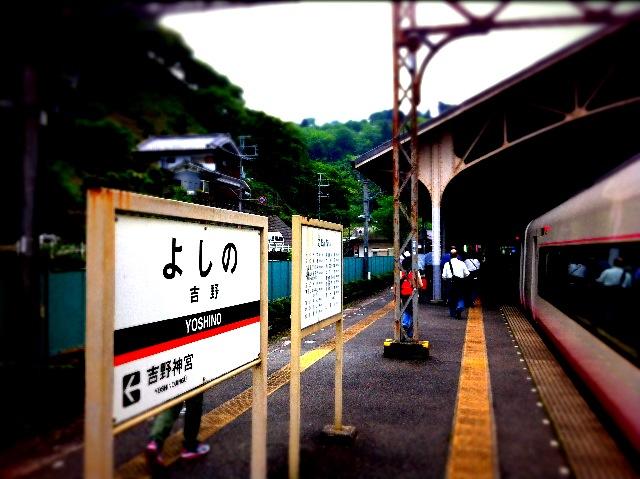 写真 (3).JPG